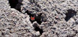 Усадка бетона при заливке